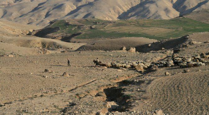 Le relation entre le pastoralisme et la gestion du foncier, une question cruciale à l'échelle globale!
