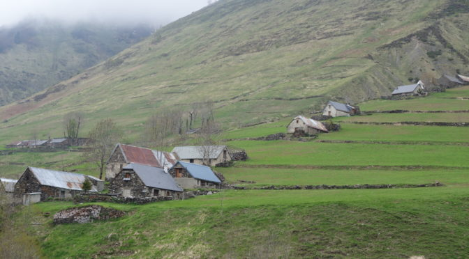 Les associations foncières pastorales dans les Pyrénées : mises en forme et préférences paysagères